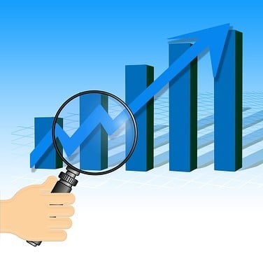 Investigating Net Profit Margin