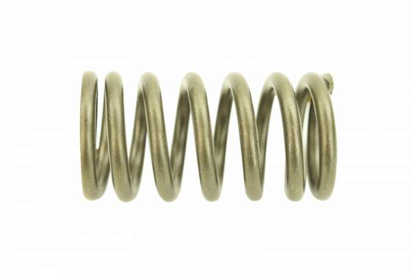 3322152 | Caterpillar C12 Outer Valve Spring, New - Image 1