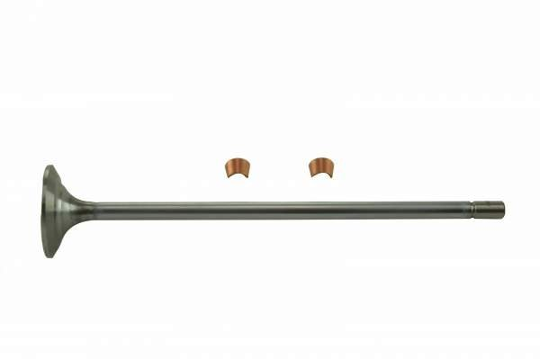 23529629 | Detroit Diesel S50/S60 Intake Valve | Highway and Heavy Parts (Intake Valve)