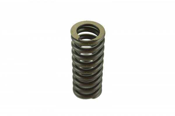8929415 | Detroit Diesel S50/S60 Valve Spring | Highway and Heavy Parts (Valve Spring)