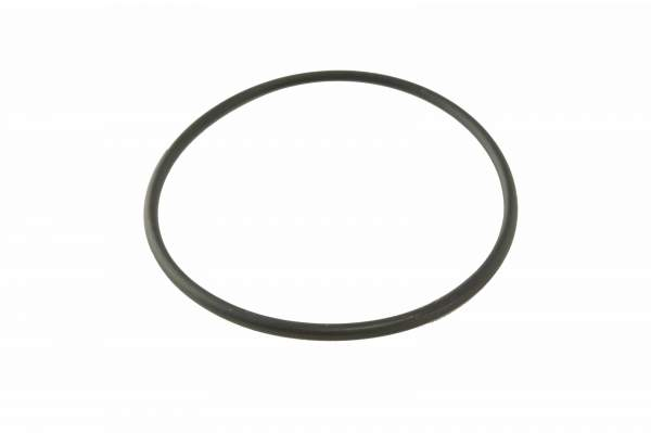 3678724 | Cummins ISX/QSX Water Pump O-Ring, New (Seal 1)