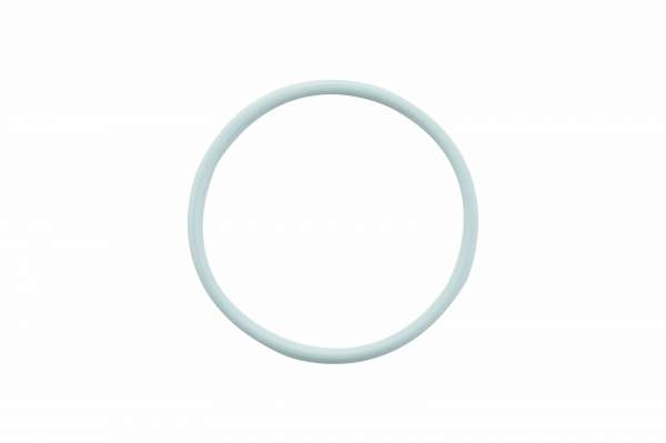 3070137 | Cummins N14 Injector Mid O-Ring Seal, New