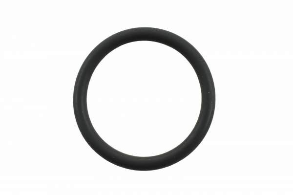 4058941 | Cummins N14 Nozzle O-Ring, New