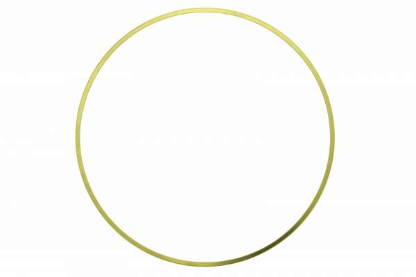 "3065406 | Cummins N14 .020"" Seal Ring, New"