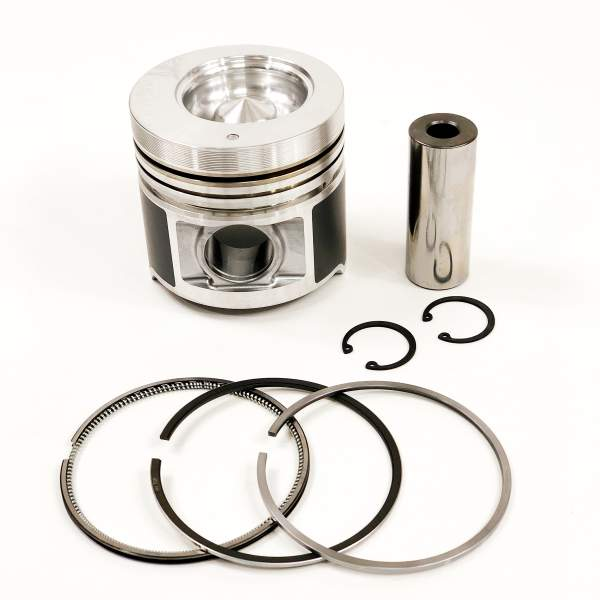 P256277 | Piston and Ring Kit