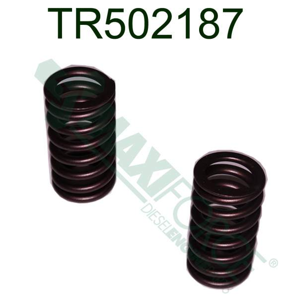TR502187 | John Deere 6081 Late Valve Spring | Highway and Heavy Parts (Valve Spring)