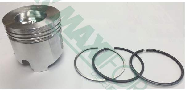 P211702 | 0.25mm Piston with Rings