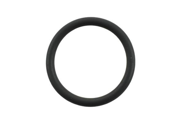 IMB - 4058941 | Cummins N14 Nozzle O-Ring, New - Image 1