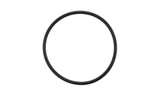 HHP - 4059172 | Cummins ISX/QSX Water Pump O-Ring, New - Image 1