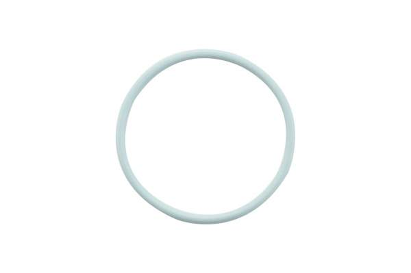 HHP - 3070137 | Cummins N14 Injector Mid O-Ring Seal, New - Image 1