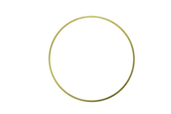 "HHP - 3054948   Cummins N14 .0205"" Seal Ring, New - Image 1"