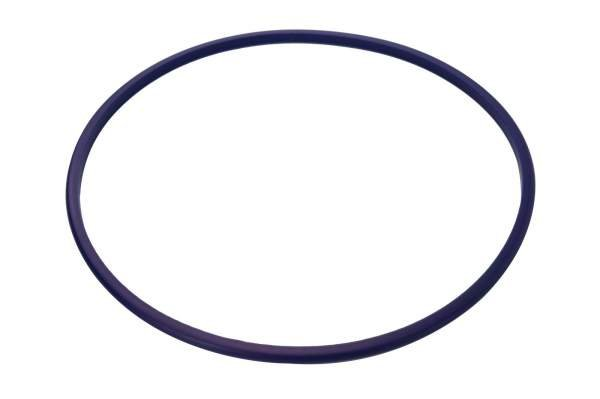 HHP - 8929176 | Detroit Diesel S50/S60 D-Ring Liner Seal | Highway and Heavy Parts - Image 1