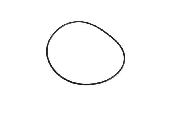 HHP - 4299124 | Cummins Seal - O-Ring