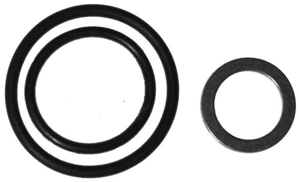 207SB12 | Mack Fuel Injection O-Ring - Image 1
