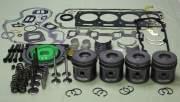 Rebuild Kits - Caterpillar - BOK533 | Caterpillar 3054C/E Out of Frame Kit with Valves