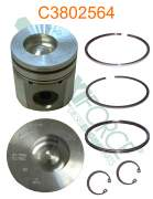 Construction/Industrial - Cummins - HE392663-20 | Cummins 4B/6B 0.50mm Piston Kit